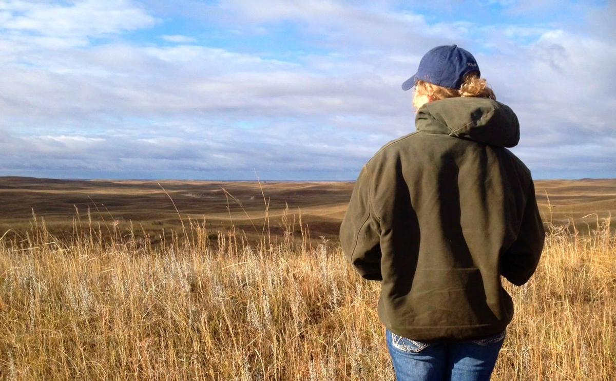 Haley in a field