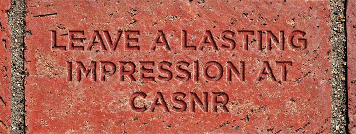 a CASNR Alumni Association Brick