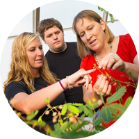 Plant Biology class in greenhouse